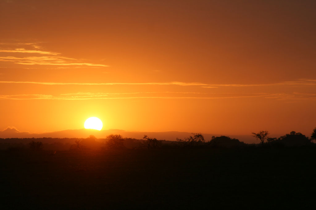 13 - Serengeti Sunrise
