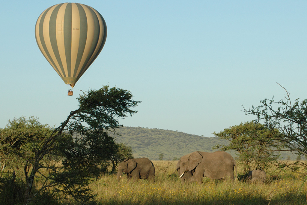 Over the Serengeti