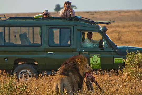 Africa Dream Safaris Vehicles_1 (11)