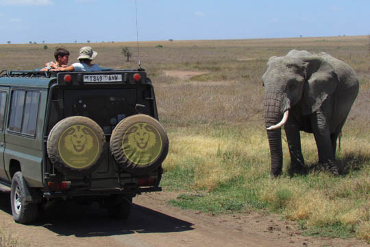 Africa Dream Safaris Vehicles_1 (13)