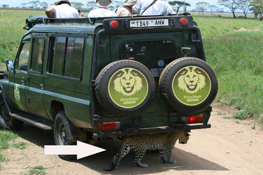 Africa Dream Safaris Vehicles_1 (6)