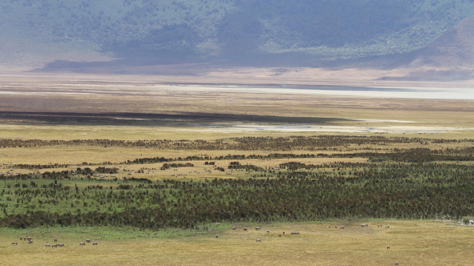 Ngorongoro Crater Africa S Garden Of Eden A Tanzania Travelogue