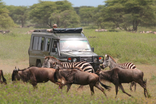 Africa Dream Safaris Film Shoot - 3 - April 2010