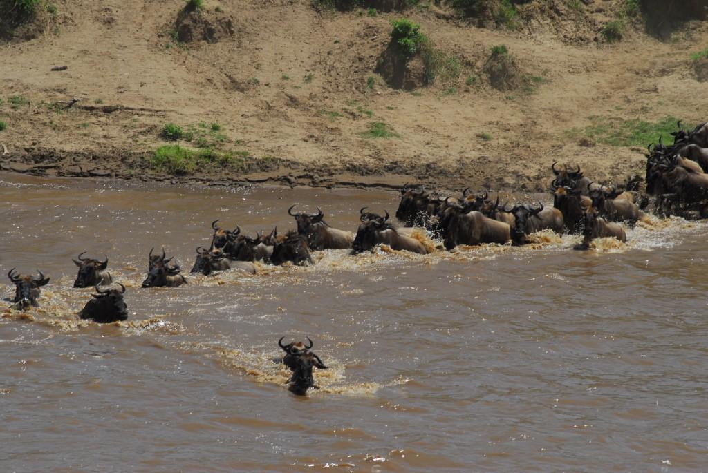 Tanzania 10012011 066