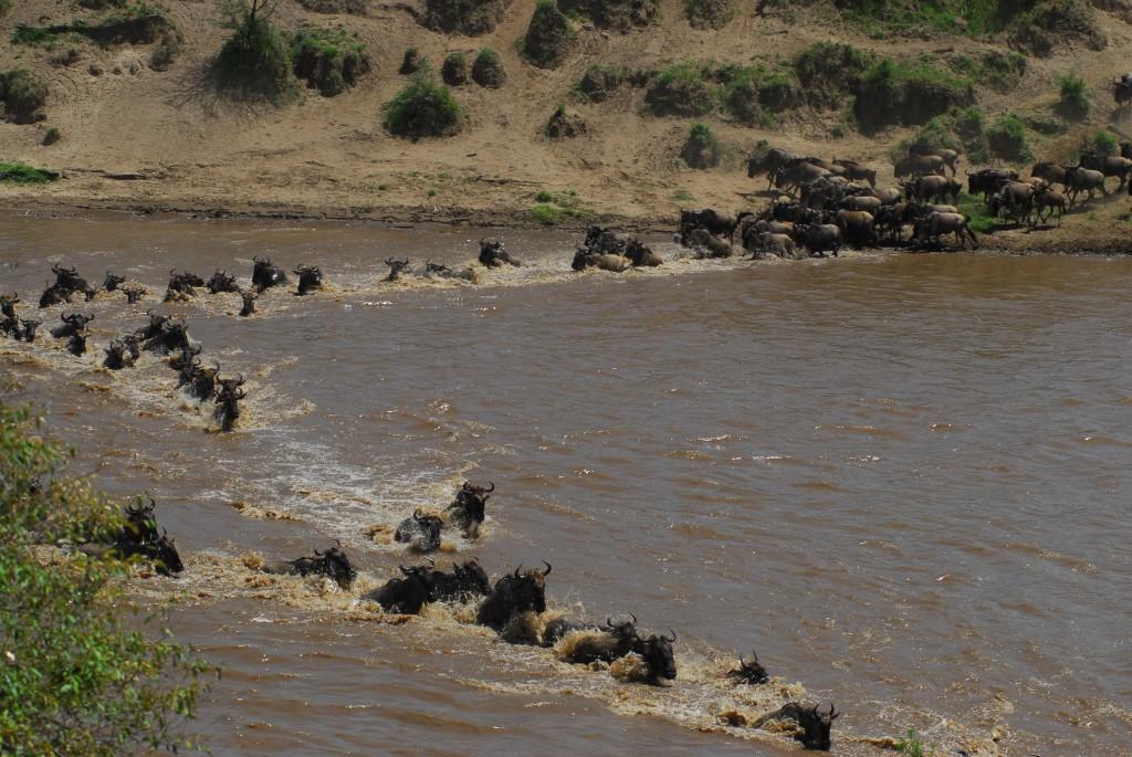 Tanzania 10012011 073