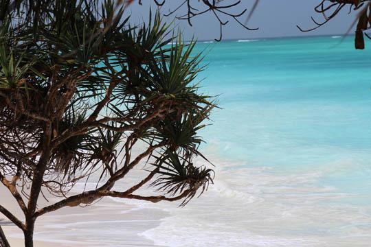 Tanzania and Zanzibar_0005_Layer 8