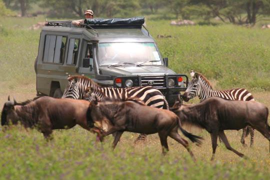 Africa Dream Safaris Vehicles_1 (14)