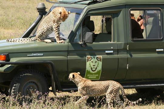 Africa Dream Safaris Vehicles_1 (5)