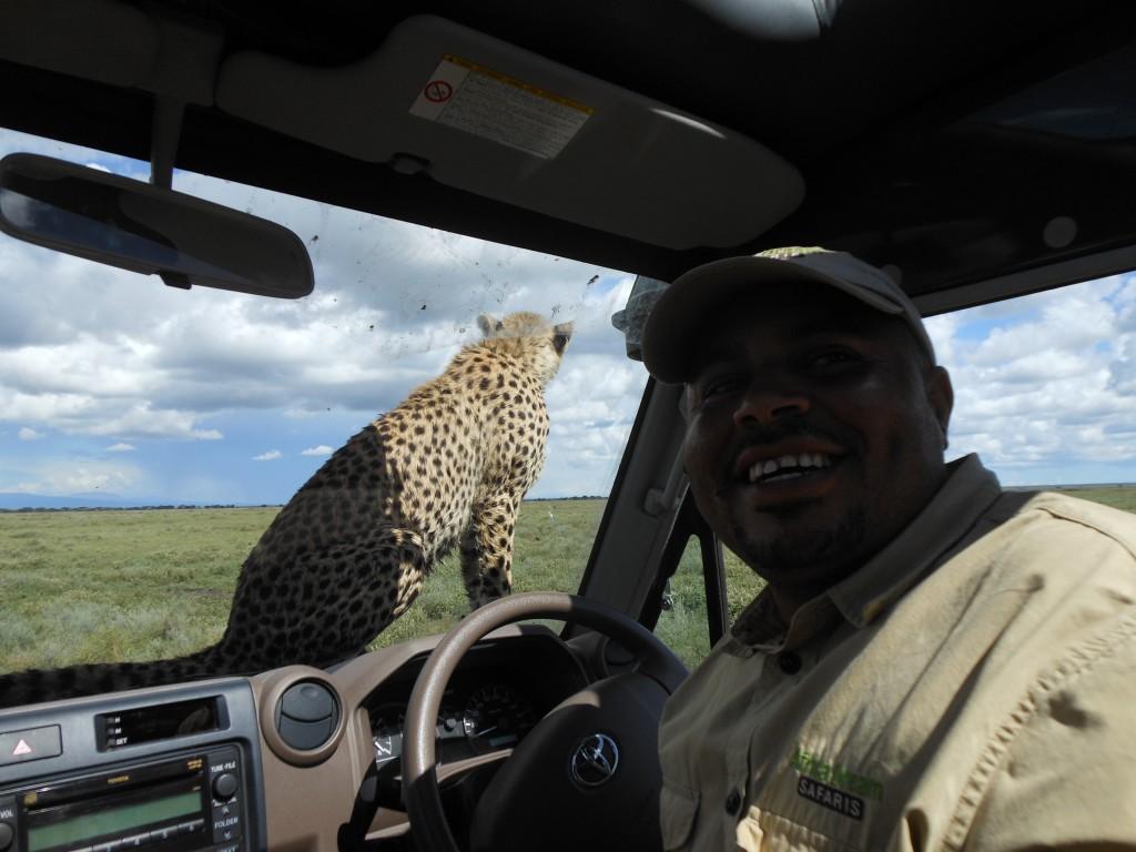 Serengeti - April 2013 - 60th birthday 174