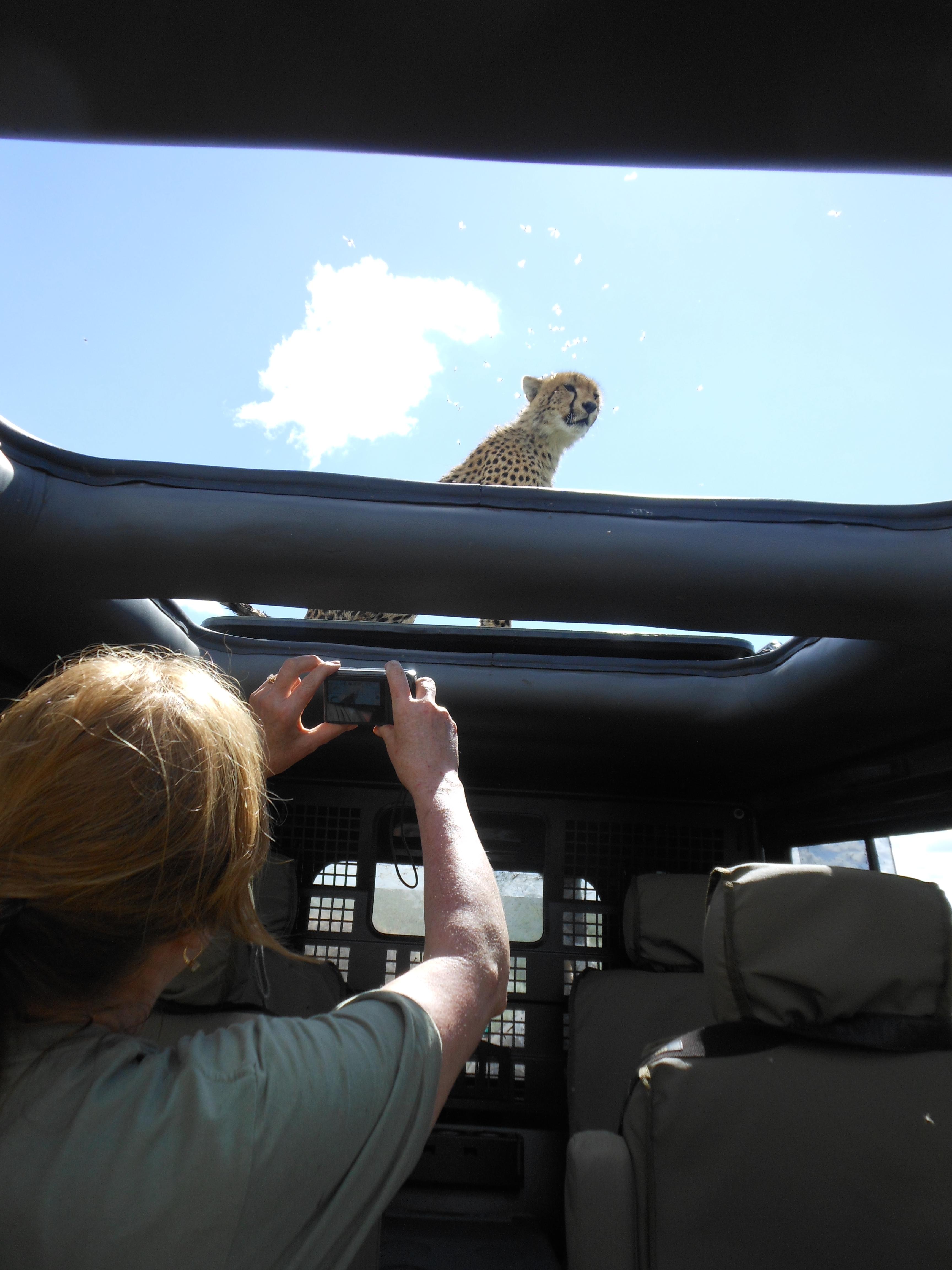 Serengeti - April 2013 - 60th birthday 185