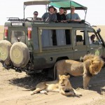 Dan and Diane R Safari Photos (8)